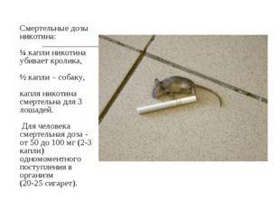Смертельные дозы никотина: ¼ капли никотина убивает кролика, ½ капли – собак