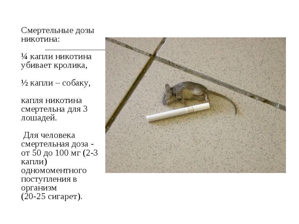 Смертельные дозы никотина: ¼ капли никотина убивает кролика, ½ капли – собак...