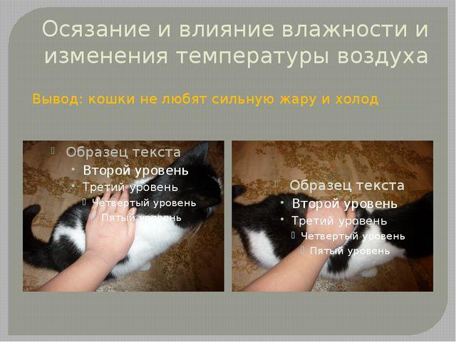 Осязание и влияние влажности и изменения температуры воздуха Вывод: кошки не...