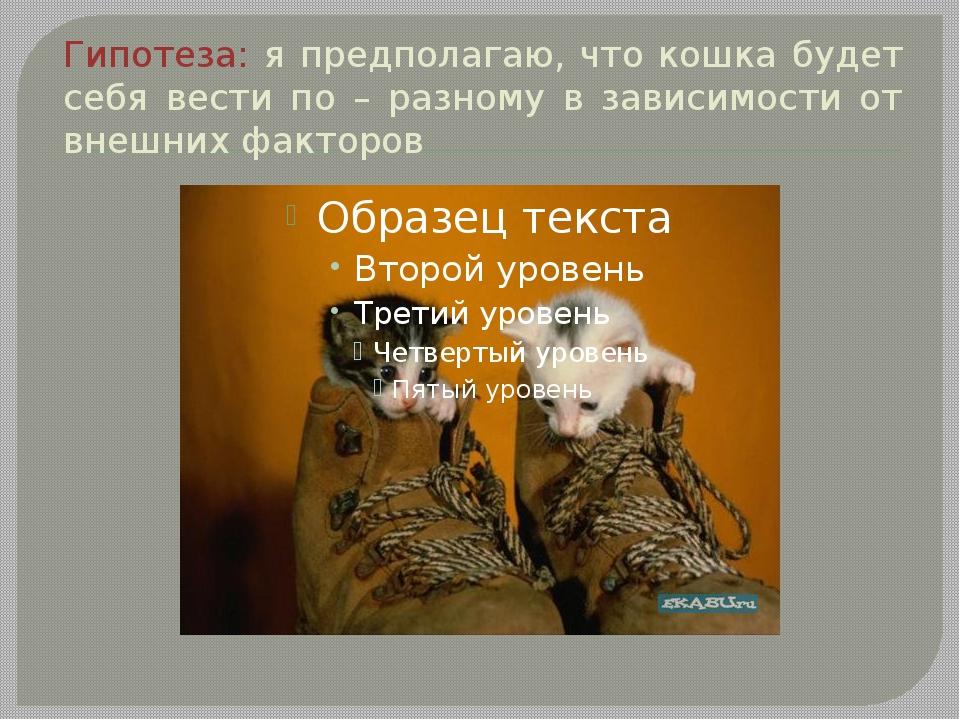 Гипотеза: я предполагаю, что кошка будет себя вести по – разному в зависимост...