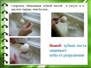 Вывод: зубная паста защищает зубы от разрушения Скорлупа, обмазанная зубной п