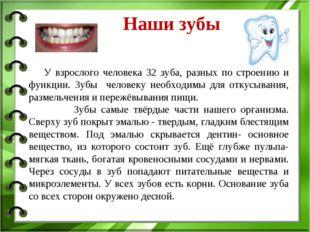 Наши зубы У взрослого человека 32 зуба, разных по строению и функции. Зубы ч