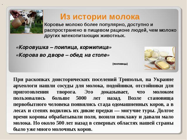 «Коровушка – поилица, кормилица» При раскопках доисторических поселений Трипо...