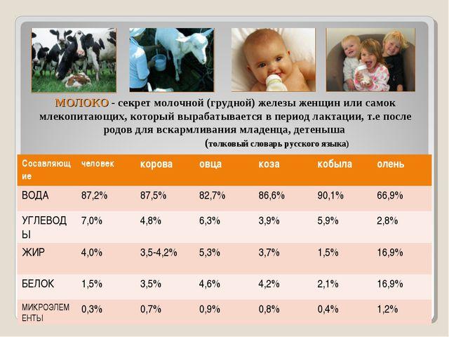 МОЛОКО - секрет молочной (грудной) железы женщин или самок млекопитающих, кот...