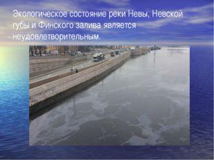 Экологическое состояние реки Невы, Невской губы и Финского залива является не