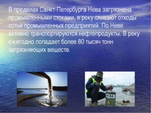 В пределах Санкт-Петербурга Нева загрязнена промышленными стоками, в реку сли