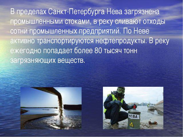 В пределах Санкт-Петербурга Нева загрязнена промышленными стоками, в реку сли...