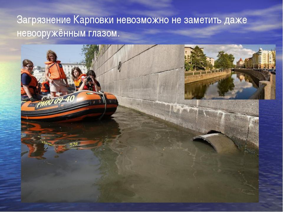 Загрязнение Карповки невозможно не заметить даже невооружённым глазом.