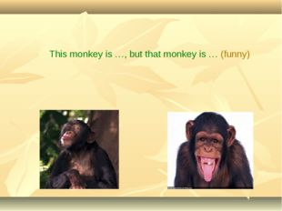 This monkey is …, but that monkey is … (funny)