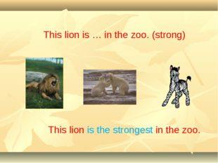 This lion is … in the zoo. (strong) This lion is the strongest in the zoo.