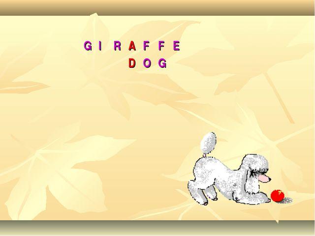 GIRAFFE DOG