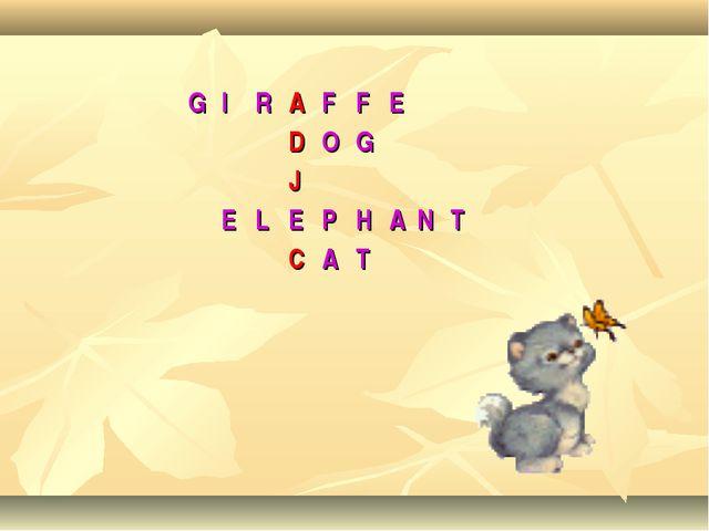 GIRAFFE DOG J ELEPHANT CAT
