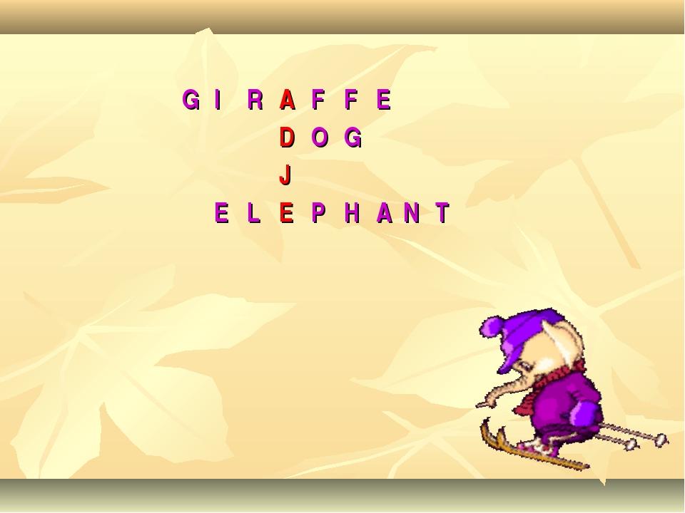 GIRAFFE DOG J ELEPHANT