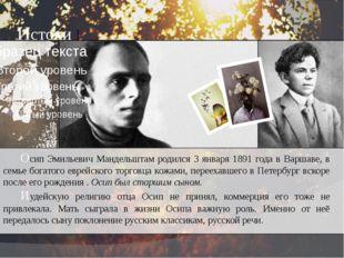 Осип Эмильевич Мандельштам родился 3 января 1891 года в Варшаве, в семье бо