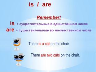 is / are Remember! is + существительные в единственном числе are + существит