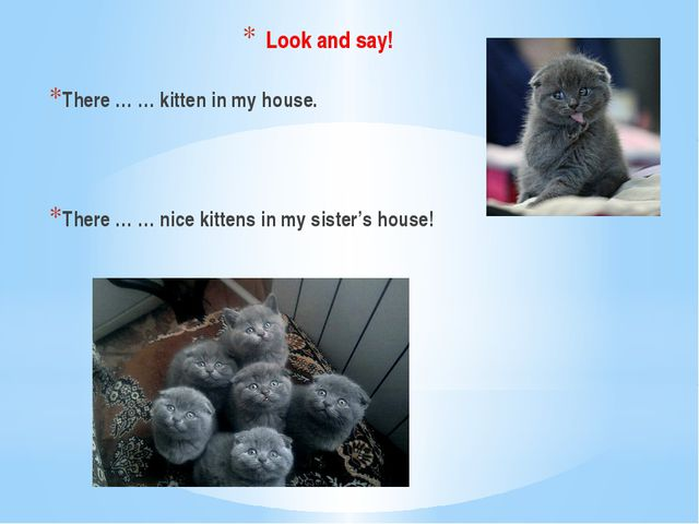 Look and say! There … … kitten in my house. There … … nice kittens in my sist...