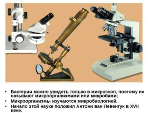 Бактерии можно увидеть только в микроскоп, поэтому их называют микроорганизма