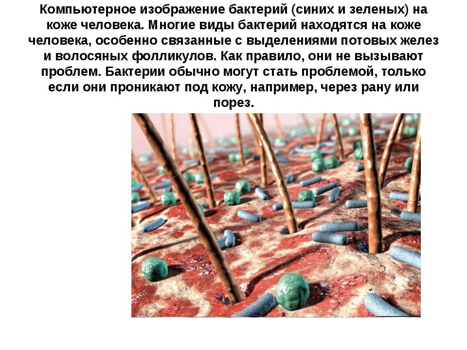 Компьютерное изображение бактерий (синих и зеленых) на коже человека. Многие...