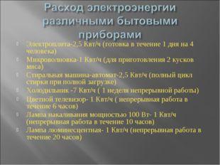 Электроплита-2,5 Квт/ч (готовка в течение 1 дня на 4 человека) Микроволновка-