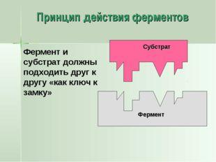 Принцип действия ферментов Фермент Фермент и субстрат должны подходить друг к