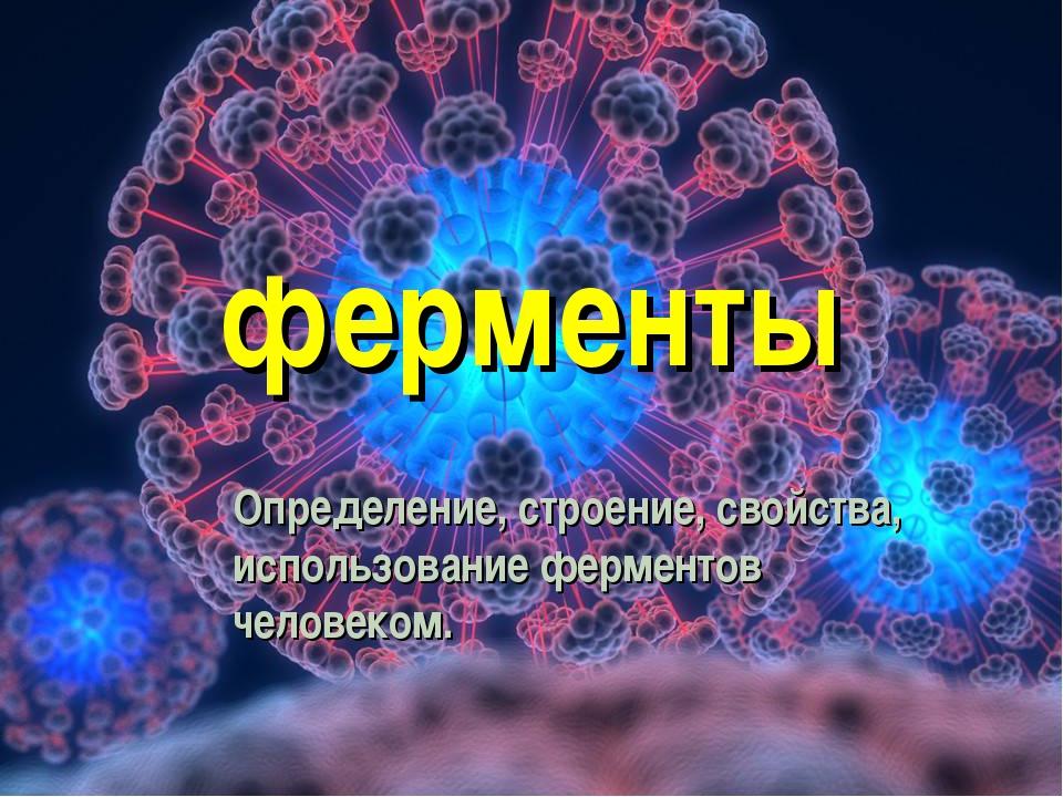 ферменты Определение, строение, свойства, использование ферментов человеком.