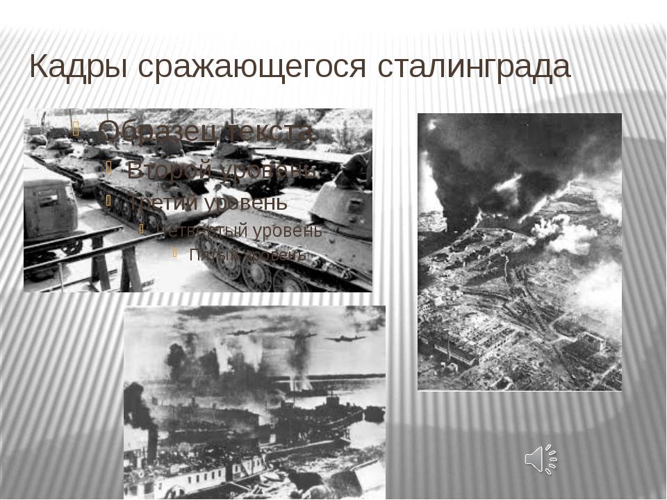Кадры сражающегося сталинграда