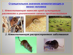 Отрицательное значение млекопитающих в жизни человека 1. Млекопитающие нанос