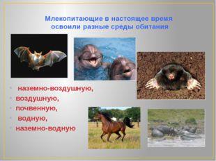 Млекопитающие в настоящее время  освоили разные среды обитания   наземно-воз