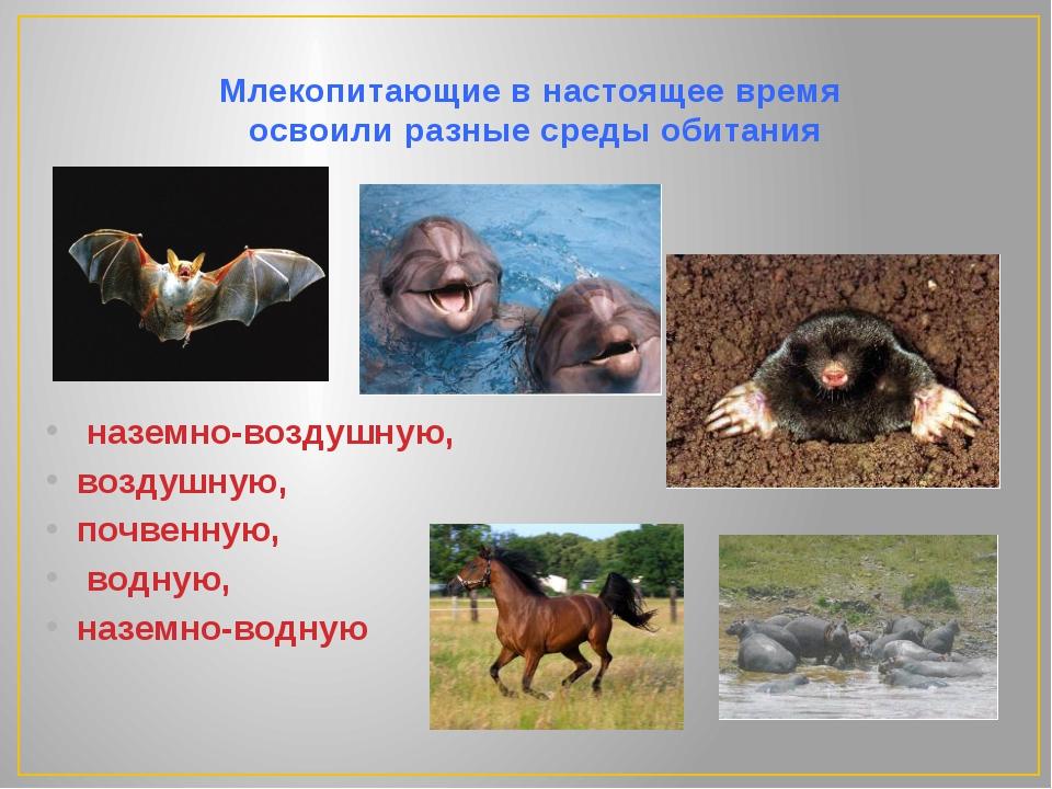 Млекопитающие в настоящее время  освоили разные среды обитания   наземно-воз...