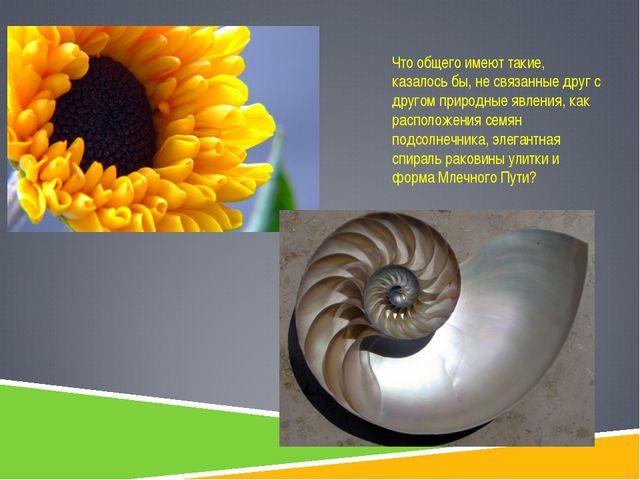 Что общего имеют такие, казалось бы, не связанные друг с другом природные явл...