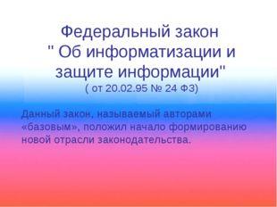 """Федеральный закон """" Об информатизации и защите информации"""" ( от 20.02.95 № 24"""