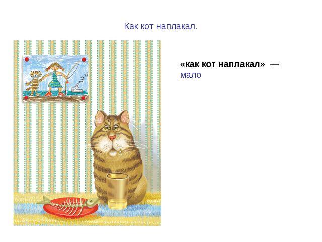 Как кот наплакал. «как кот наплакал» — мало