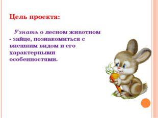 Цель проекта: Узнать о лесном животном - зайце, познакомиться с внешним видом
