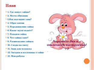 План 1. Где живут зайцы? 2. Места обитания 3.Как выглядит заяц? 4. Образ жизн