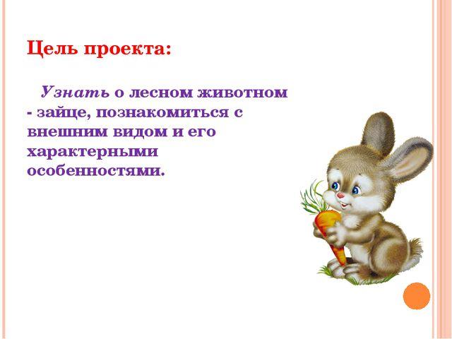 Цель проекта: Узнать о лесном животном - зайце, познакомиться с внешним видом...