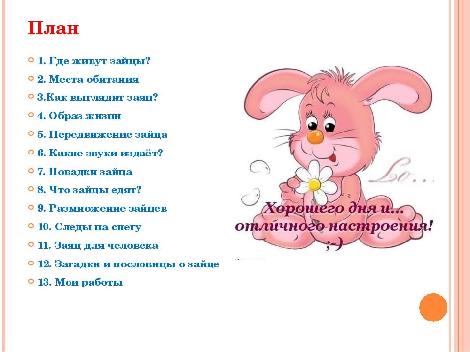 План 1. Где живут зайцы? 2. Места обитания 3.Как выглядит заяц? 4. Образ жизн...