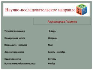 Научно-исследовательское направление Александрова Людмила Установочная сессия
