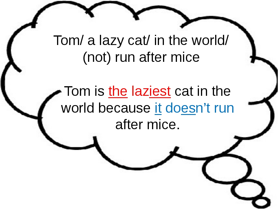 Tom/ a lazy cat/ in the world/ (not) run after mice Tom is the laziest cat in...