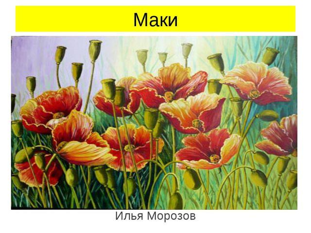 Маки Илья Морозов Илья Морозов