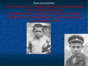 Были расстреляны: Аксён Тимонин (14 лет), Тимофей Тимонин (12 лет), Василий