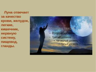 Луна отвечает за качество крови, желудок, легкие, кишечник, нервную систему,