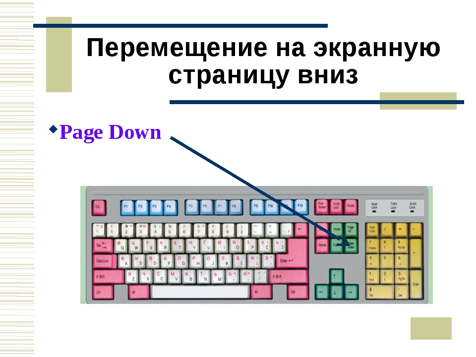 Перемещение на экранную страницу вниз Page Down