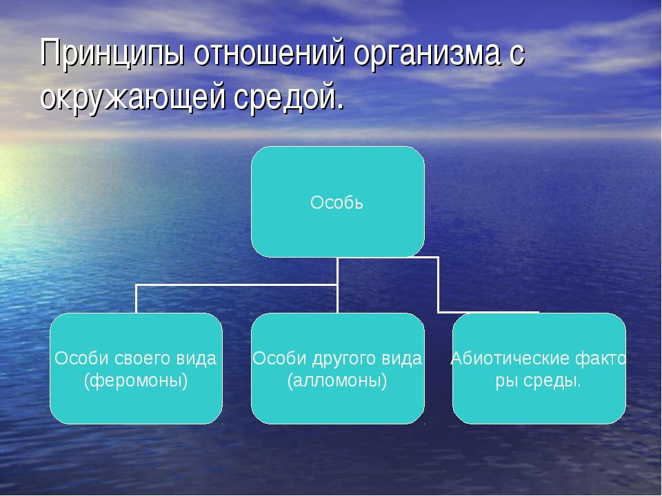 Принципы отношений организма с окружающей средой.