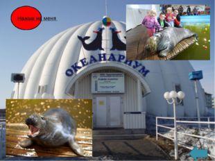 Североморский городской молочный завод Североморский городской молочный завод