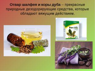 Отвар шалфея и коры дуба– прекрасные природные дезодорирующие средства, кото