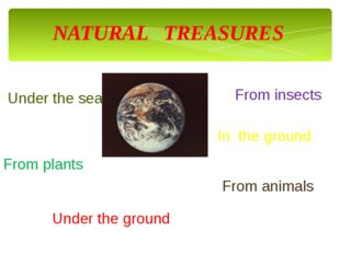 NATURAL TREASURES Under the sea From animals From plants From insects In the