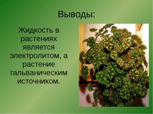Выводы: Жидкость в растениях является электролитом, а растение гальваническим