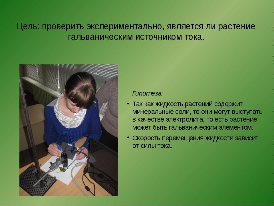 Цель: проверить экспериментально, является ли растение гальваническим источн...