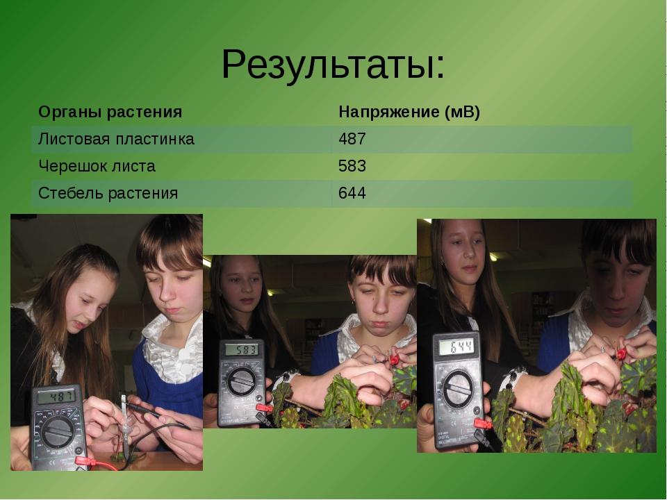 Результаты: Органы растения Напряжение (мВ) Листовая пластинка 487 Черешок ли...