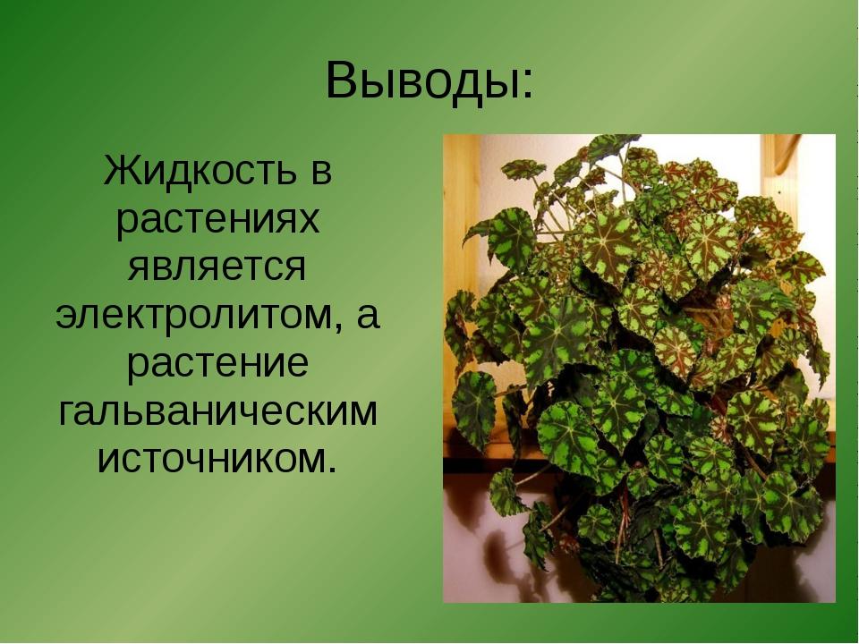 Выводы: Жидкость в растениях является электролитом, а растение гальваническим...